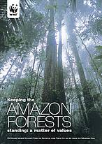 Keeping_the_amazon_forests_standing_217761