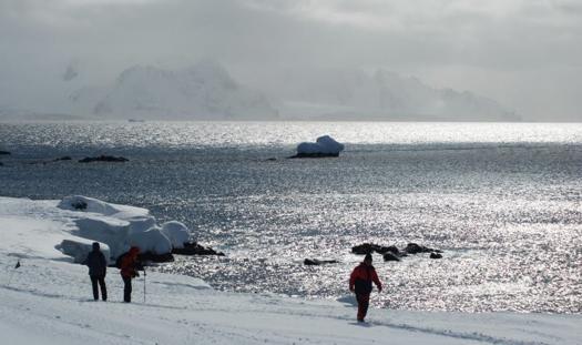Early_summer-antarctica