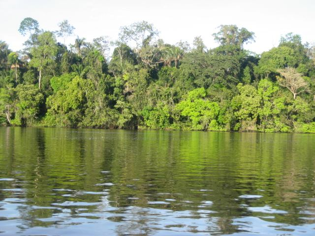 Amazon-Xingu River