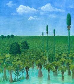 300-million-old-forest-2011-15076