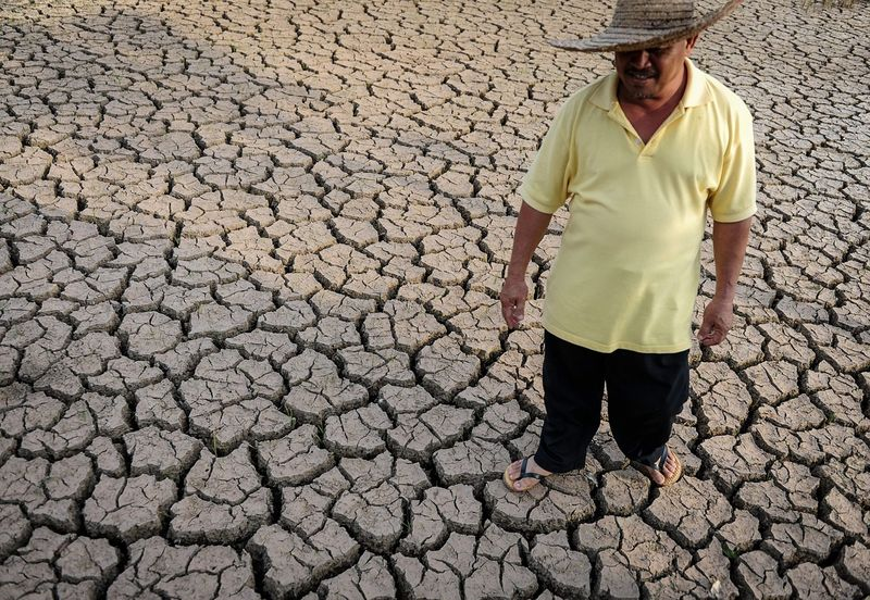 Drought-658713_1280