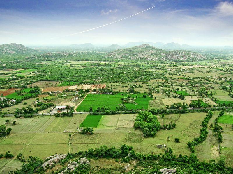 Landscape_India