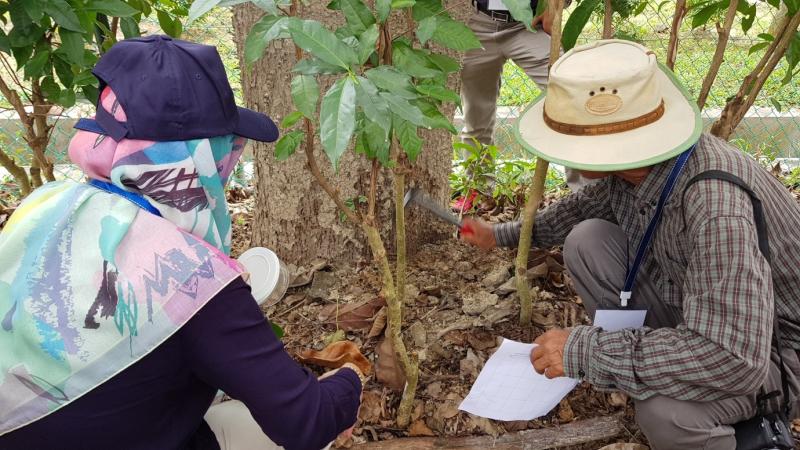 Termites workshop 3